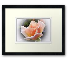 Peace and Harmony in the World Framed Print