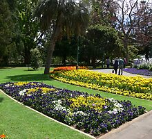Queens Park by PhotosByG