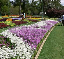 Queens Park 1 by PhotosByG