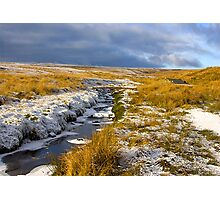 Birkdale Beck Photographic Print
