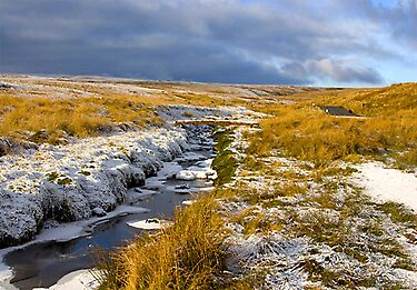Birkdale Beck by Trevor Kersley
