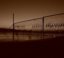 grotesk sunset with fence beach lake 3 antik by parafux