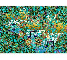 THE COLOR OF MUSIC Photographic Print