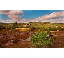 Looking West at Pedernales Falls State Park, Texas Photographic Print