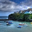 Port Isaac Harbour Cornwall by David Wilkins
