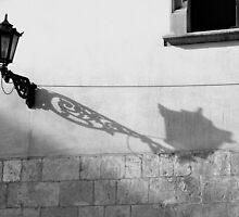 Street lamp by Manuel Gonçalves