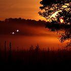 The Swan Song by arvyart