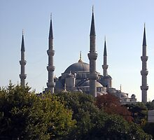 The Blue Mosque by GCAPARO
