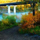 Prospectors Point  - North Saskatchewan River by Roxanne Persson