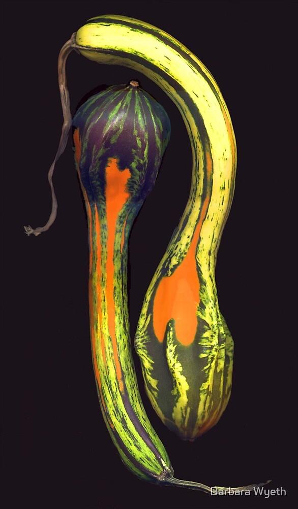 Wanda's Gourds by Barbara Wyeth