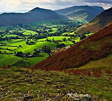 Early Sunlight - Newlands Valley, Cumbria. UK by David Lewins
