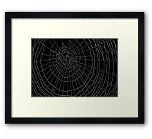 The Art of the Spider Framed Print
