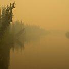 Chena River by Gary Lengyel