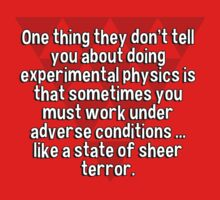 One thing they don't tell you about doing experimental physics is that sometimes you must work under adverse conditions ... like a state of sheer terror. by margdbrown