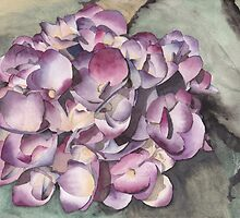 Purple Hydrangea by Ken Powers