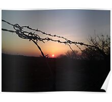 Repression and nature can be a beautiful thing Poster