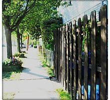 Neighborhood Pathway Photographic Print