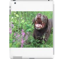 Alligator Smile iPad Case/Skin