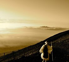 Japanese Pilgrimage by Valerie Rosen