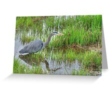 Heron in the Reeds Greeting Card