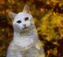 Reflection of Fall by ibjennyjenny