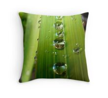 water drops in a row Throw Pillow