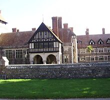 rousdon manor by brucemlong