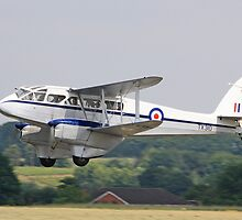 A Dragon Rapide takes off from Halfpenny Green UK by davidc
