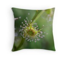 ~ Tall Sundew ~ Throw Pillow