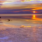 Lake Sunset by Fred Seghetti