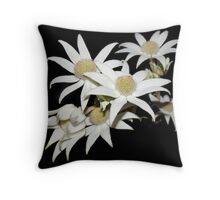 Flannels in bloom Throw Pillow