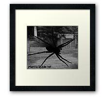 Boris the Spider Framed Print