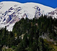 Mt. Rainier by Debbie Stika