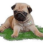 Pug puppy with butterfly by Cazzie Cathcart