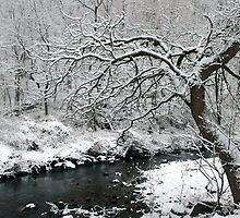 Snowy Dead Run  by elasita