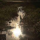 Streetside Reflection by HeavenlyCanvas