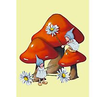 Toadstools, Gnome, and Daisies: Fantasy Art Photographic Print