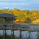 Fall at Baltz Lake by Susan Blevins