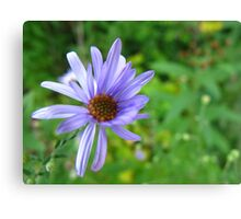 A crowd of one Canvas Print