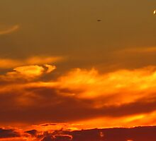 Bronzed Coppertone Sky by MarianBendeth