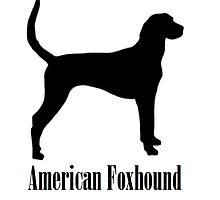 American Foxhound by Brogy2323