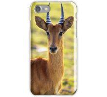 Puku iPhone Case/Skin