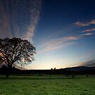 Spring sunset by Saverio Savio