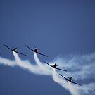 air show 10 by BlaizerB