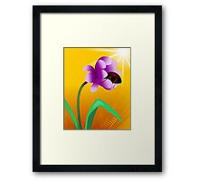 Honey tasting insect from the beautiful sun shining flower Framed Print