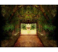Magic World ©  Photographic Print
