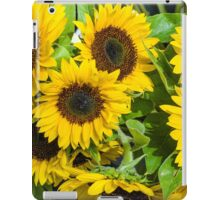 Yellow sunflowers in bloom iPad Case/Skin