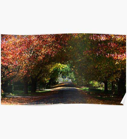 Autumn in Robertson Poster