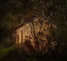 The house in the woods by Jan Pudney