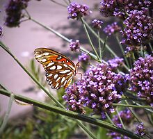 Loving Summertime by hannahsview